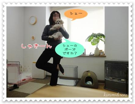a4_20110226150617.jpg