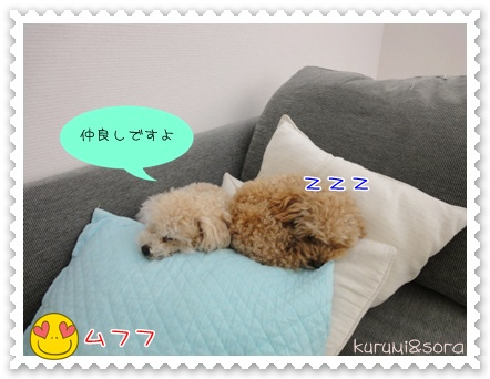 a4_20110328001817.jpg