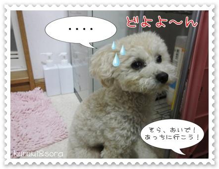 a4_20110426194307.jpg