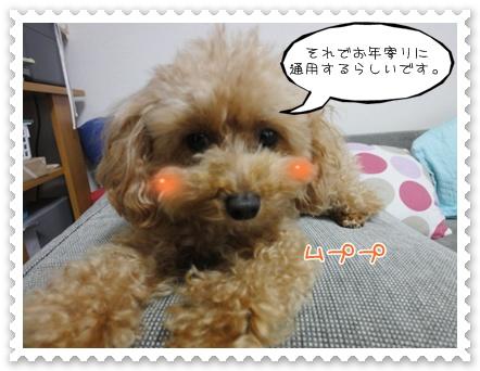 a4_20111203110256.jpg