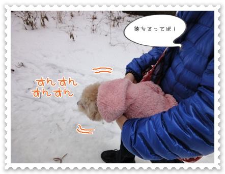 a4_20120102142207.jpg