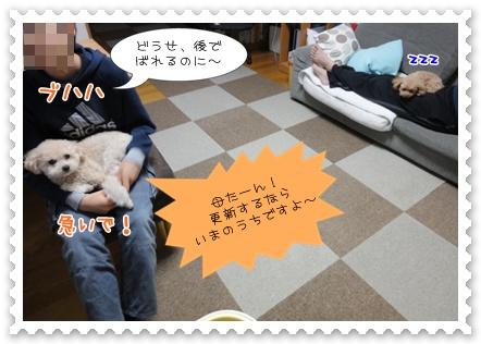 a4_20120111231521.jpg