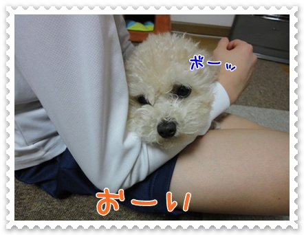 a4_20120119192821.jpg