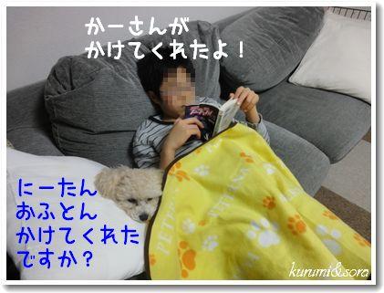 a5_20101208201533.jpg