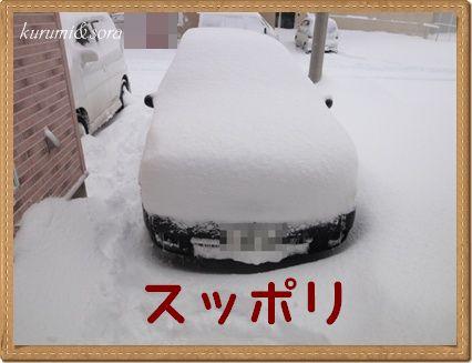 a5_20101228213758.jpg