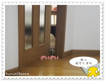 a5_20110515203604.jpg