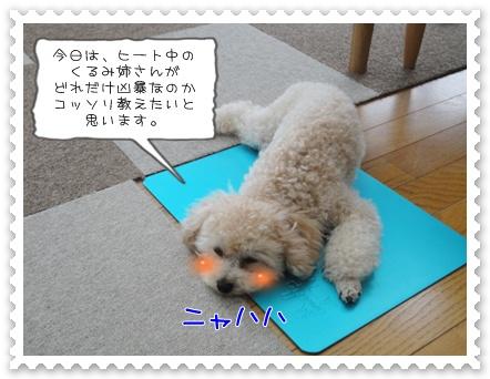 a5_20110727183245.jpg