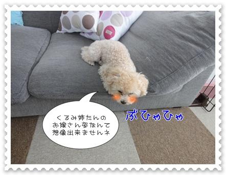 a5_20110730111002.jpg