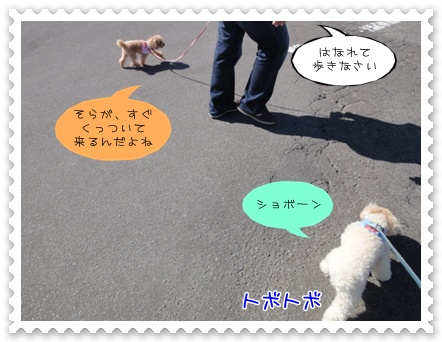 a5_20110925100427.jpg