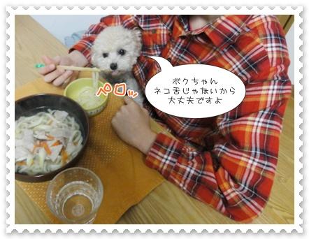 a5_20120117205620.jpg