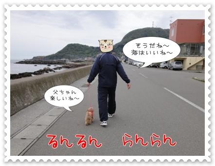 a6_20110525205637.jpg