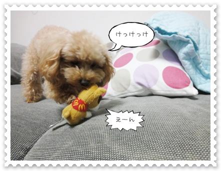 a6_20111119094856.jpg
