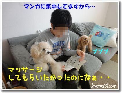 a7_20101129214049.jpg