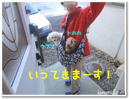 a7_20101214181901.jpg