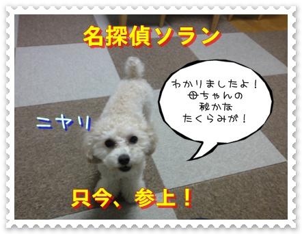 a7_20110107185922.jpg
