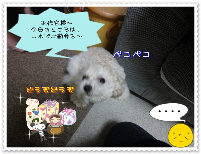 a7_20110115111943.jpg