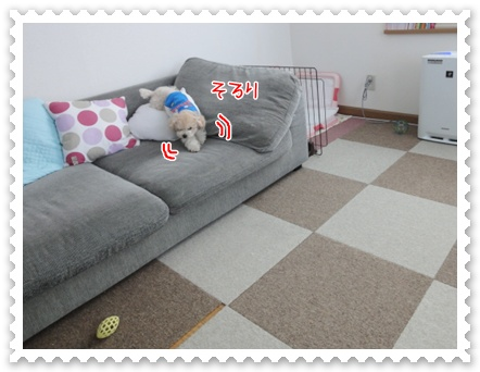 a7_20111208235154.jpg