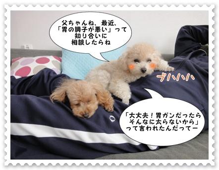 a7_20111225194255.jpg