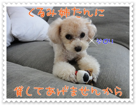 a8_20110830220148.jpg