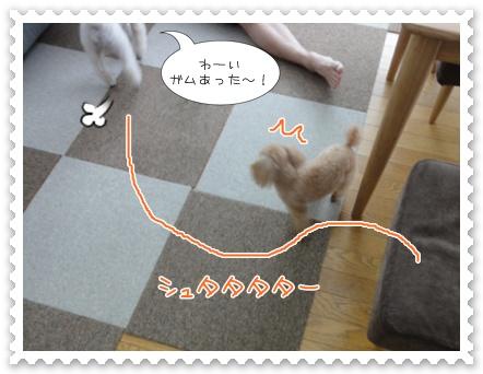 a8_20111023120246.jpg