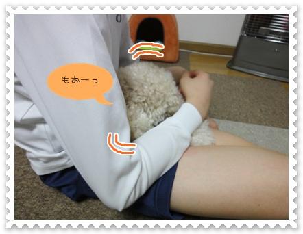 a8_20120119193015.jpg