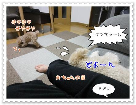 a8_20120124195649.jpg