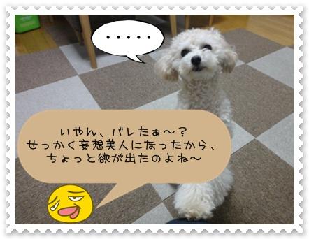 a9_20110107190003.jpg