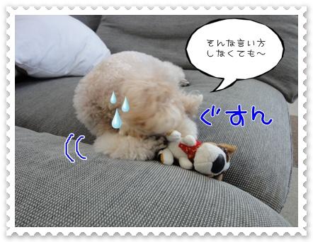 a9_20110830220147.jpg