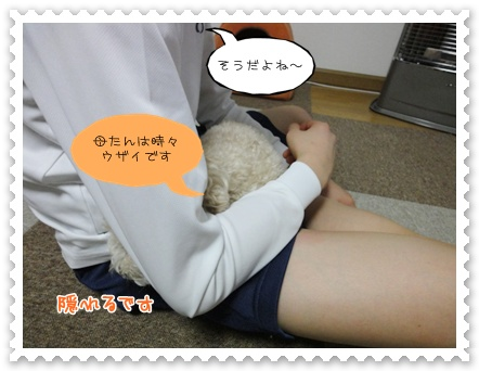 a9_20120119193015.jpg