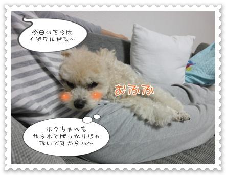 b10-2_20111116205552.jpg