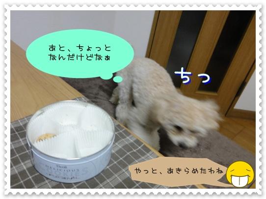 b10_20110110015051.jpg