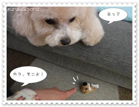 b10_20110409120757.jpg