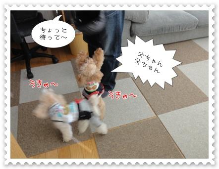 b10_20110618154938.jpg