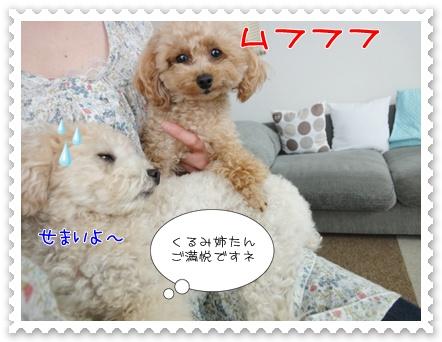 b10_20110723163029.jpg