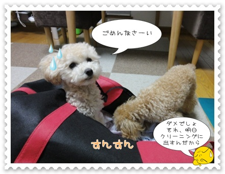 b10_20110806191108.jpg
