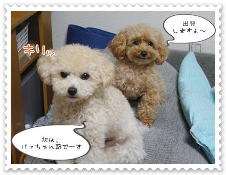 b10_20111130214649.jpg