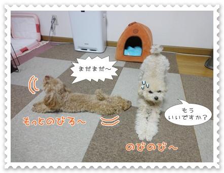 b10_20120129164936.jpg