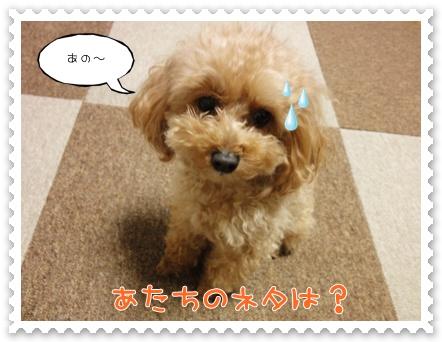 b10_20120204160610.jpg