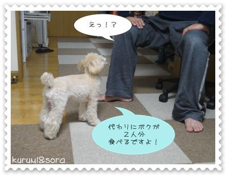 b11_20110219215003.jpg