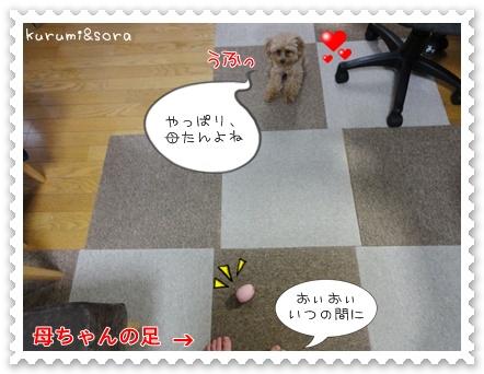 b11_20110517183756.jpg