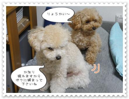 b11_20111130214649.jpg