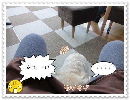 b11_20120103230047.jpg