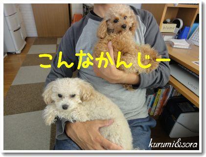 b12_20101028142851.jpg
