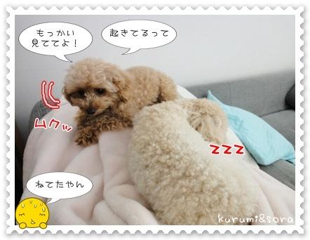 b12_20110511164143.jpg