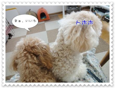 b12_20110723163029.jpg