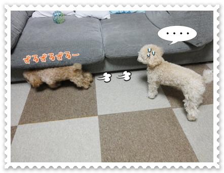 b12_20120129164936.jpg