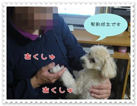 b13_20110219215042.jpg