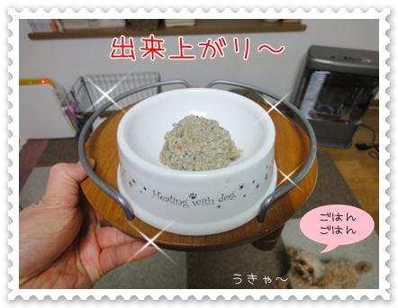 b13_20110303201929.jpg