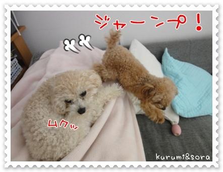 b13_20110511164242.jpg