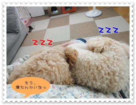 b13_20110723163059.jpg
